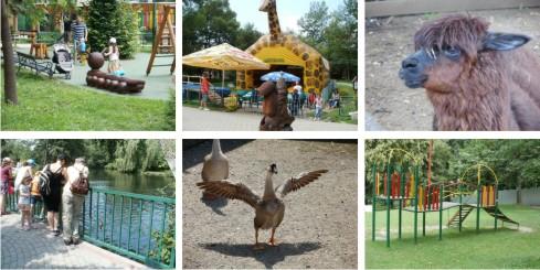 ZOO - zoologická záhrada - Spišská Nová Ves