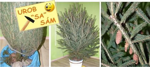 vianočný stromček v stojane